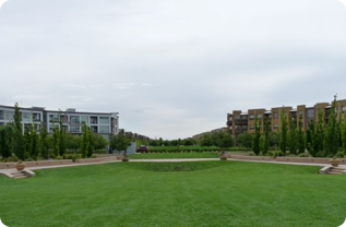 Founders Green in Stapleton Denver