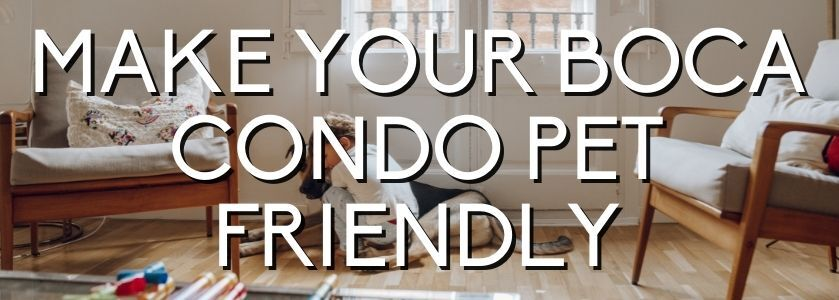 pet friendly condo | boca luxury condo blog cover