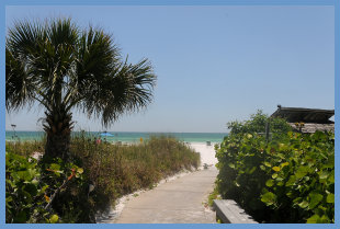 Beach and Bay condos on Siesta Key