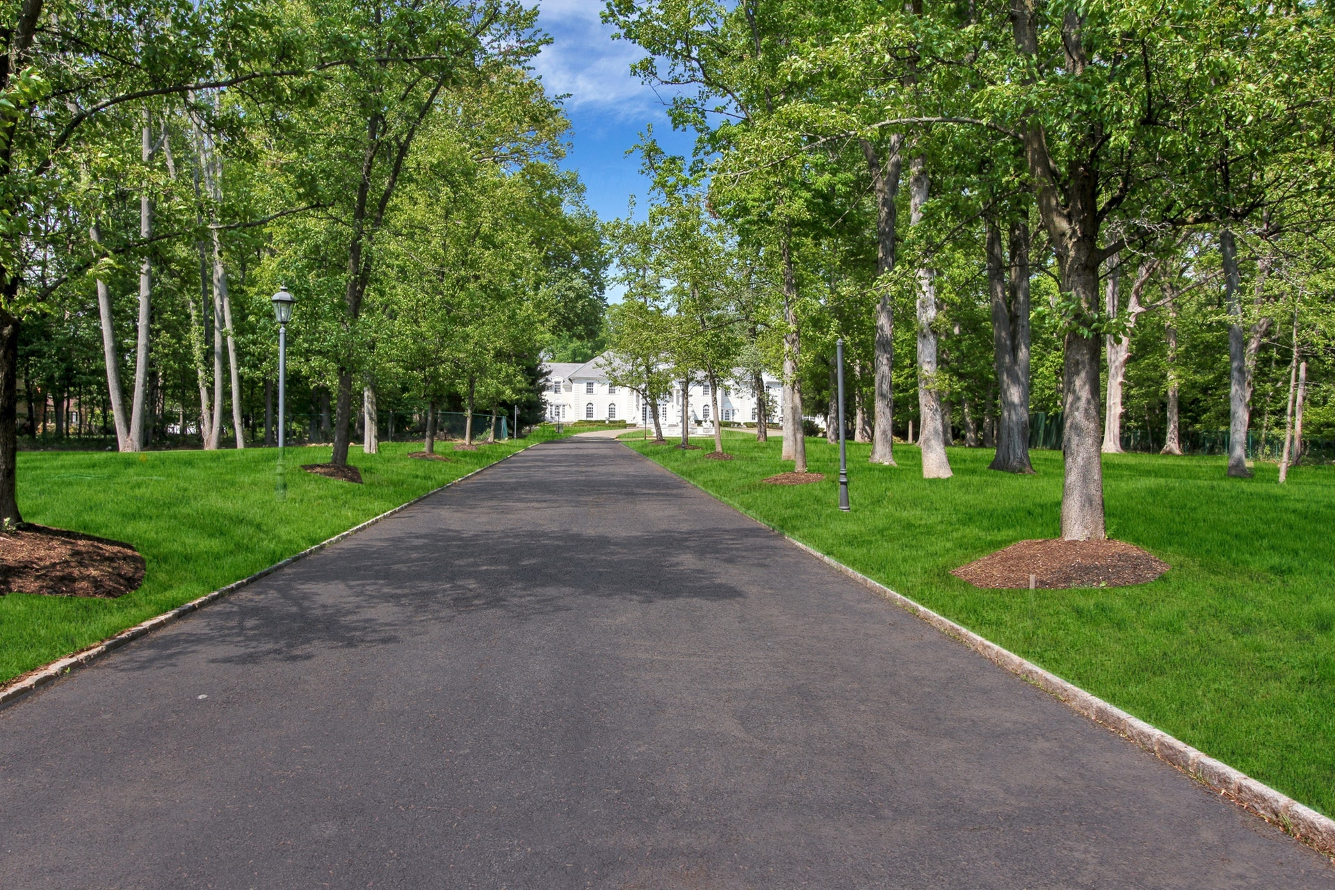 325 South Orange Avenue - Driveway