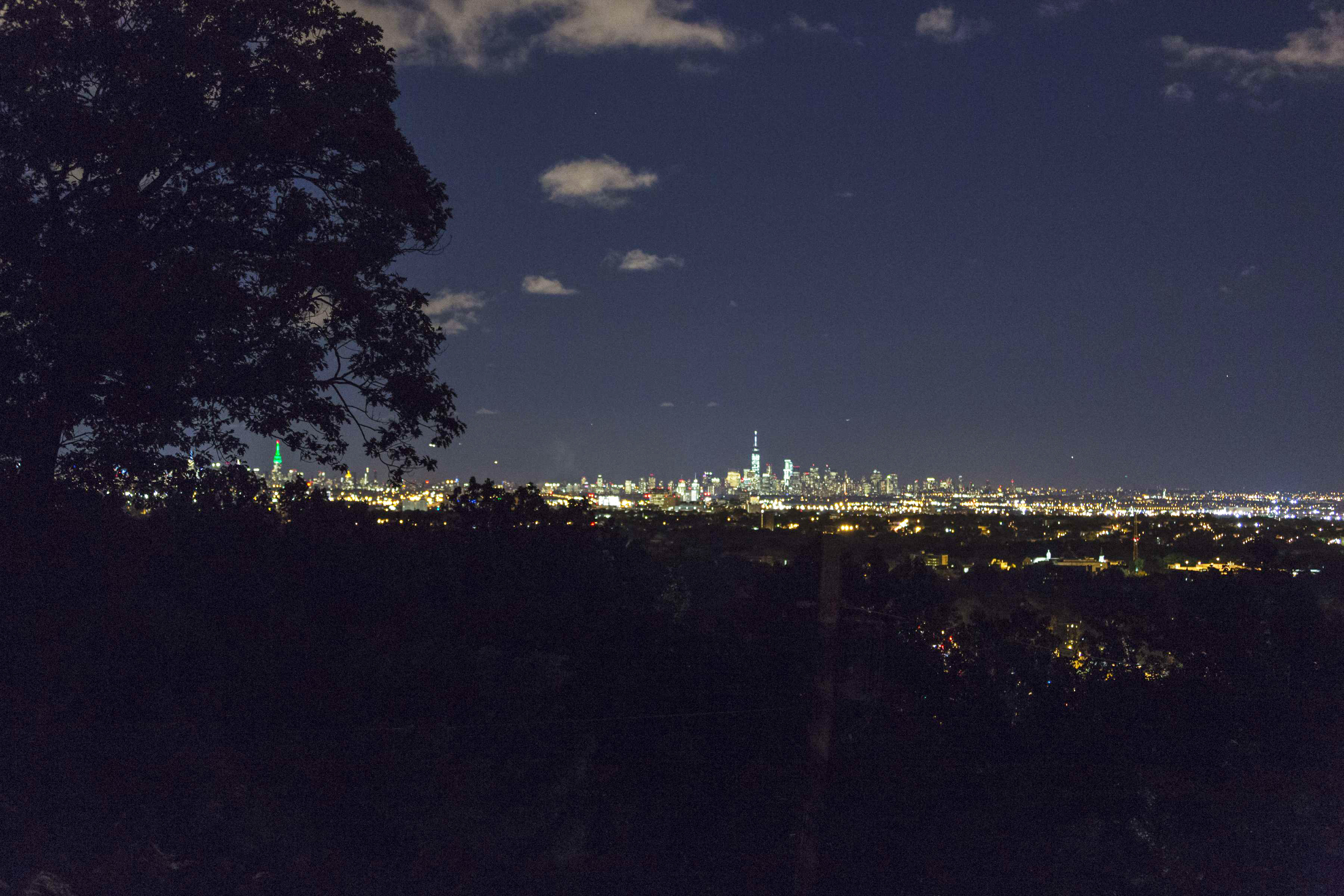 48 Crest Drive NYC View