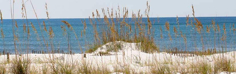 Orange Beach and Gulf Shores AL real estate