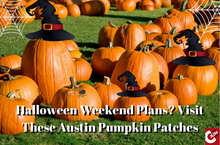 Halloween weekend in Austin Pumpkin Patches in Austin