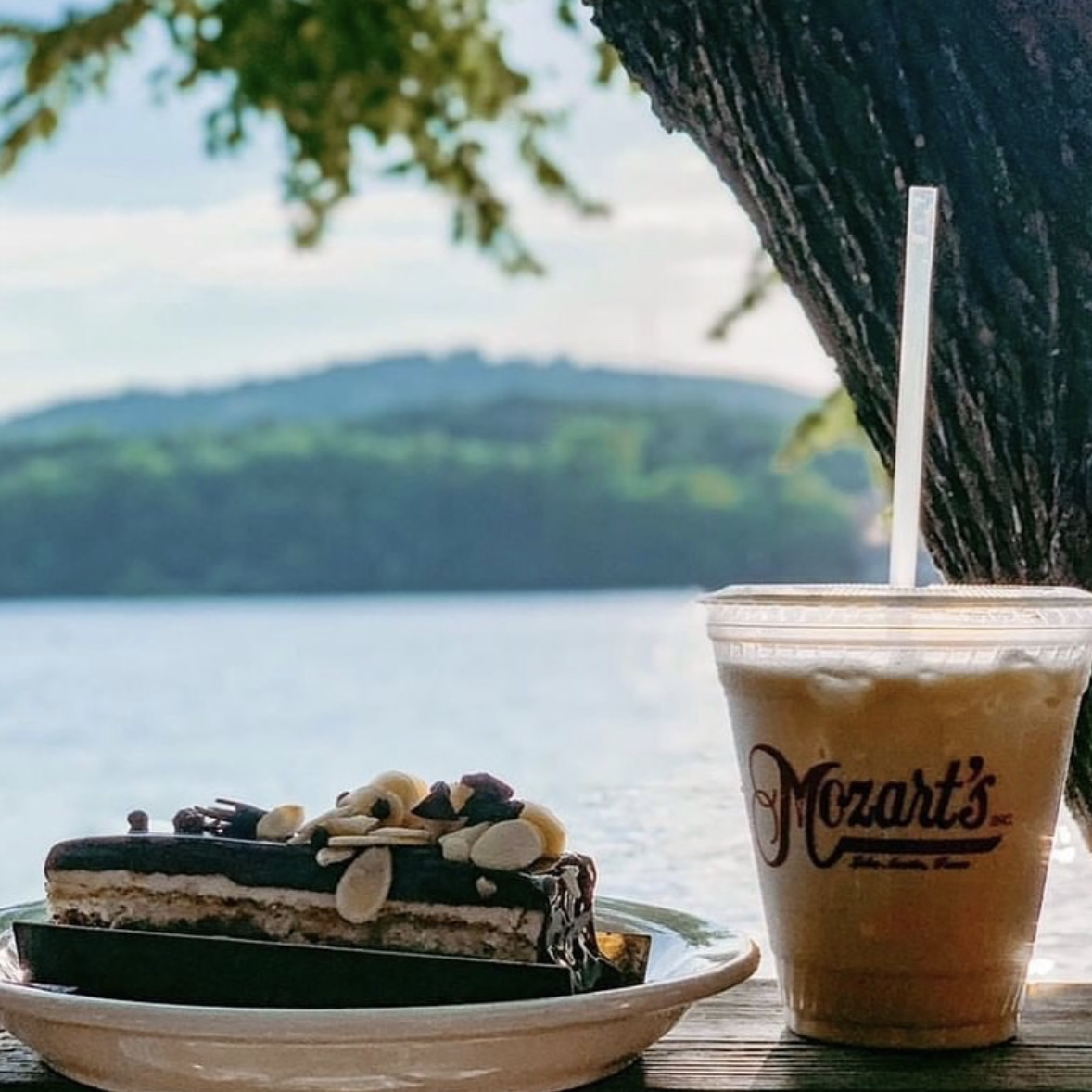 mozart coffee