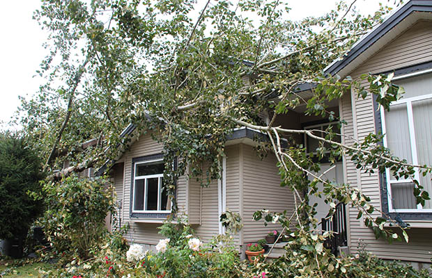 calgary-property-damage
