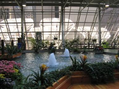 Inside Devonian Gardens