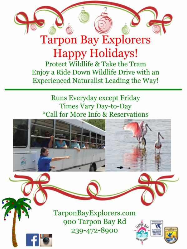 Tarpon Bay Explorers Christmas
