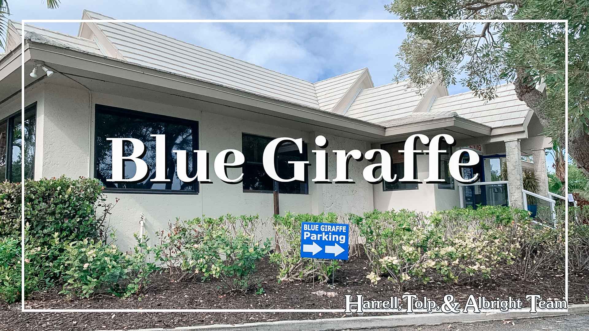 Blue Giraffe Beachview