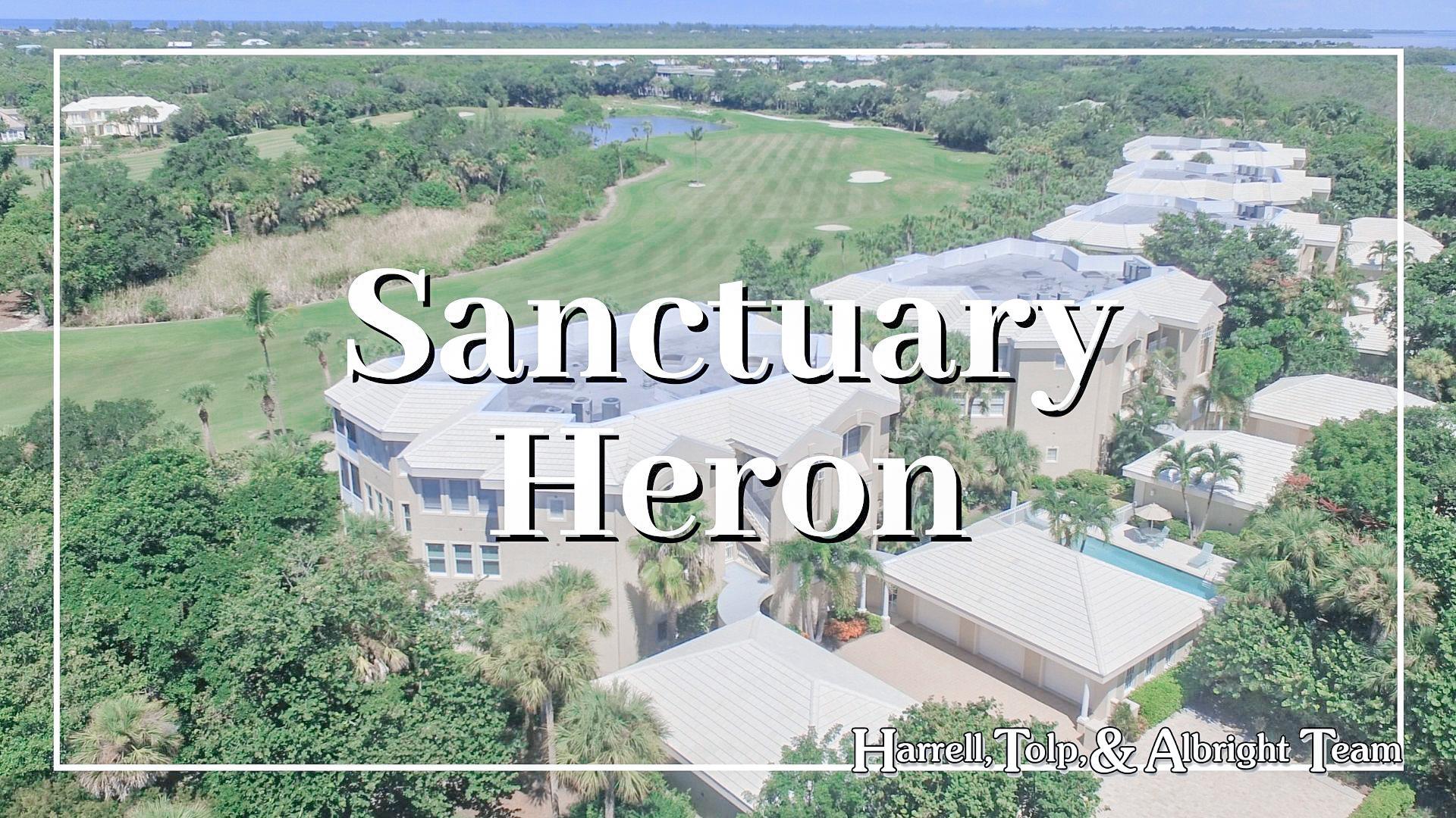 Sanctuary Heron