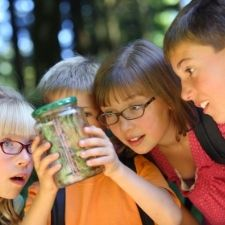 children looking into jar with bugs at summer camp