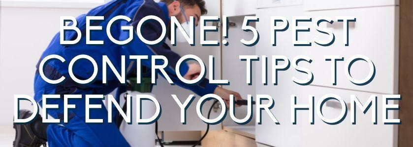 pest control tips for your boca home