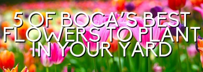 boca raton flowers to plant