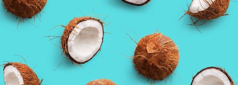 split coconuts on teal background