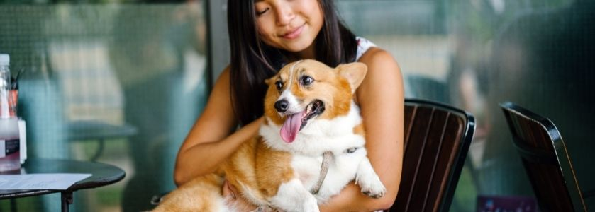 cute dog with smiling girl at restaurant
