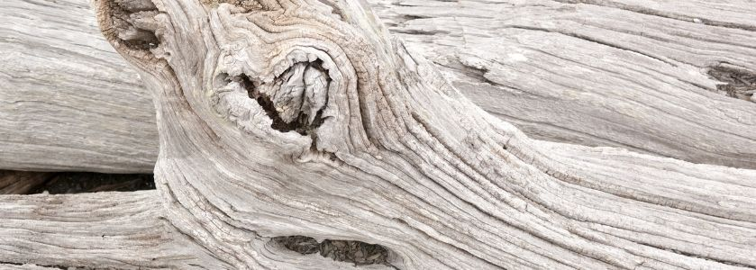 pale driftwood used in decor