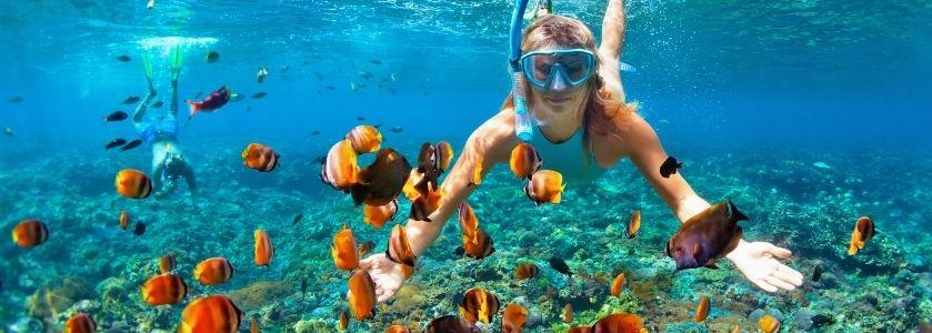 snorkeling at red reef
