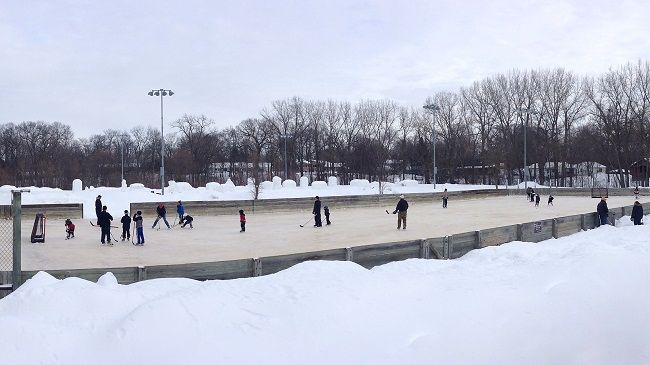 Badger Park Hockey Rink - Shorewood MN
