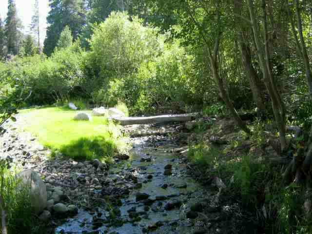 Creek Running Behind Property at Creek Lane