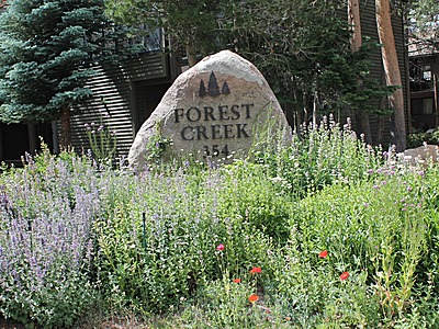 Forest Creek Complex Sign and Entrance in Summer