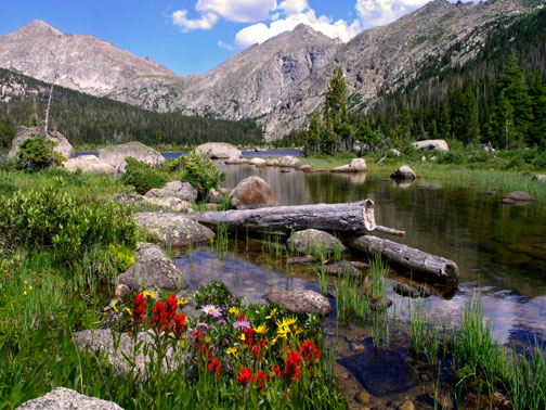Mammoth Lakes Summer Thunderstorms, Green Grass and Flowers in Back Country