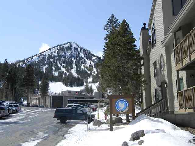 Snowbird Condos with Canyon Lodge in Background