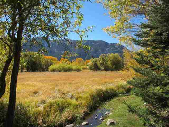 SNOWCREEK MEADOW