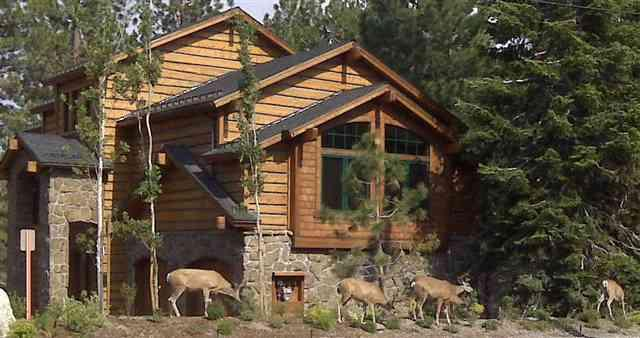 Stonegate Luxury Homes with Deer Grazing in Front