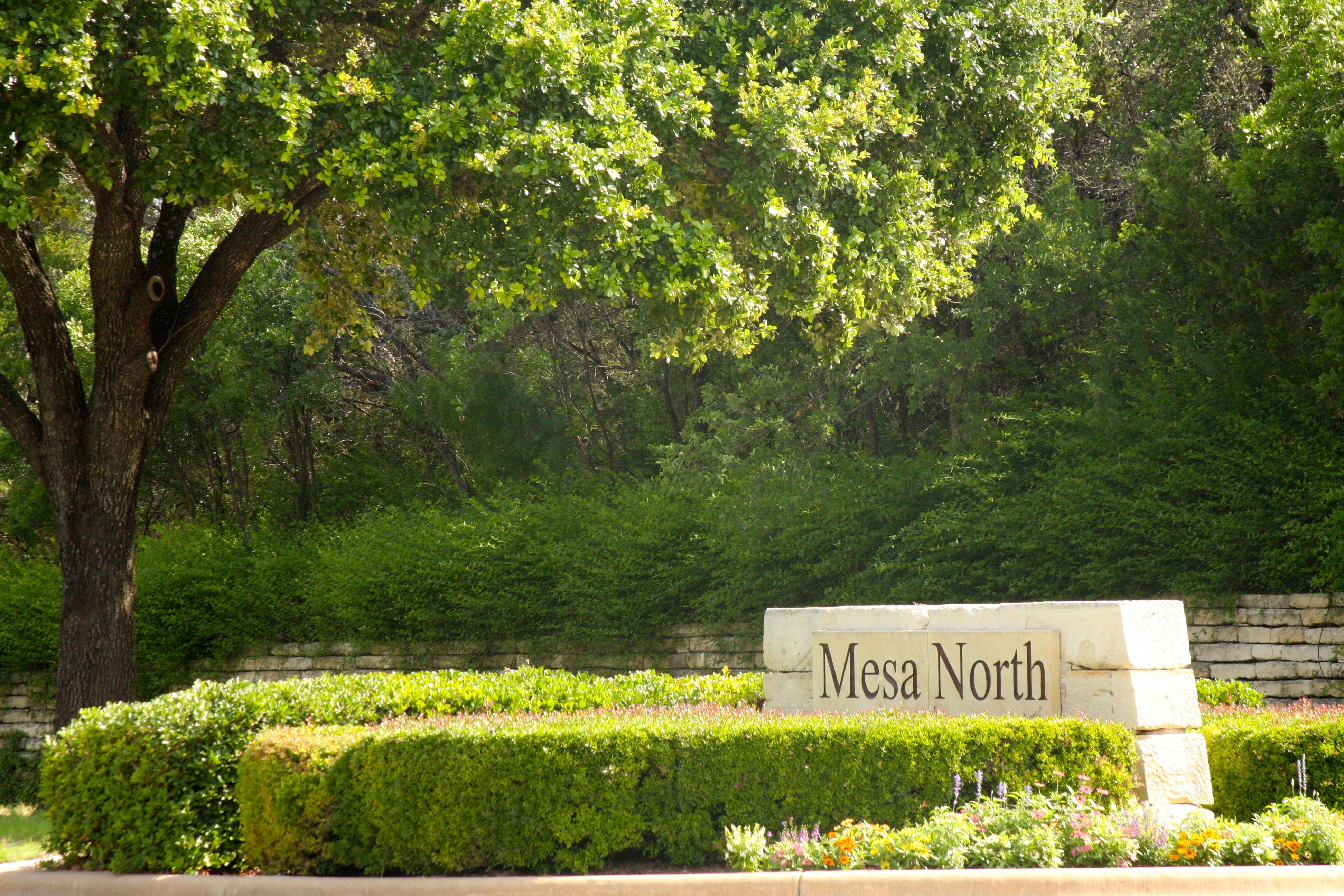 Homes for sale Mesa North Steiner Ranch, Austin Texas Real Estate, Gene Arant Team