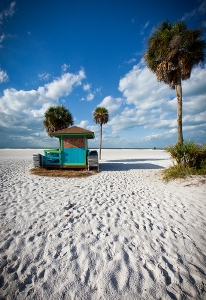 Siesta Key Property