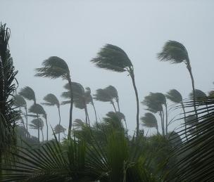 Florida Storm