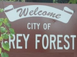 City of Grey Forest