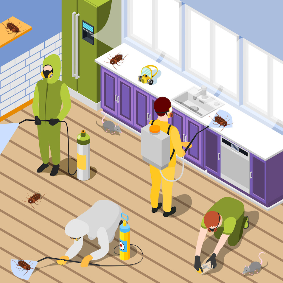 Tips to Protect Your Home From Pests