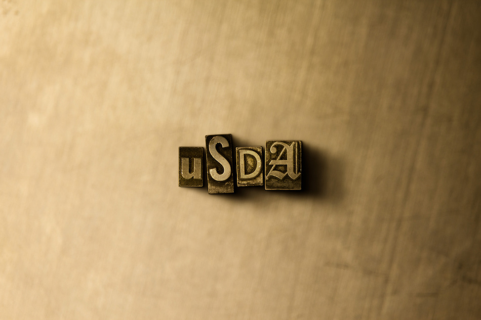 Understanding USDA Home Loans