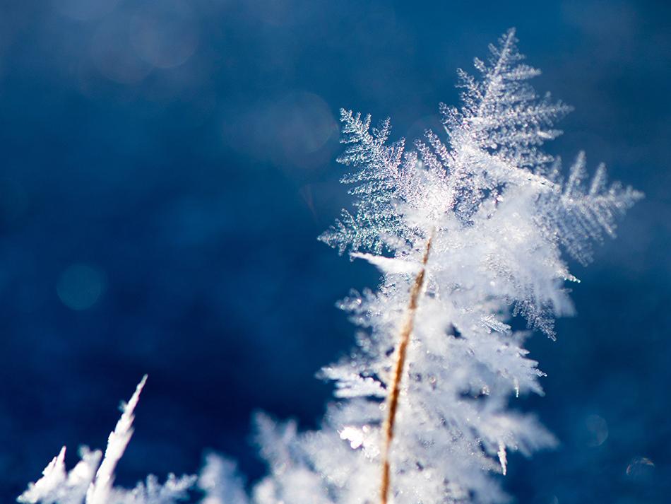Winter Home Buying Season