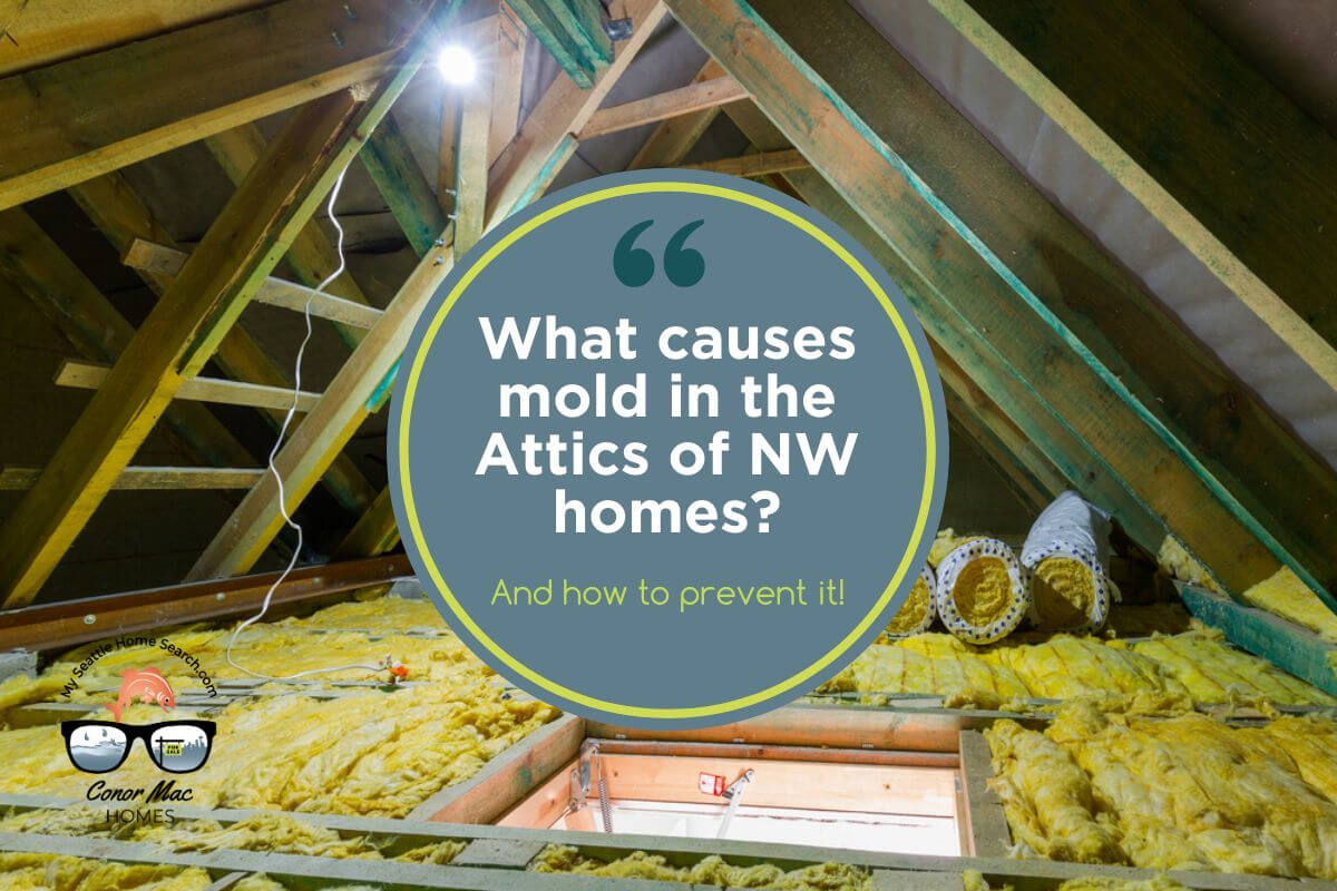 Causes of mold in attics of northwest area homes