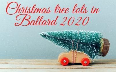 Where can I buy a Christmas tree in Ballard Seattle