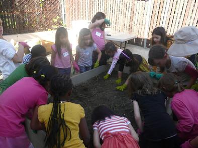 Franklin Avenue Elementary School In Los Feliz students planting a garden