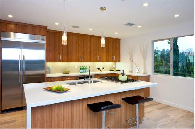 Streamline modern Silver Lake kitchen