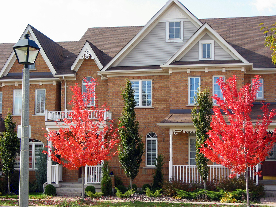 Holly Springs Townhouses For Sale