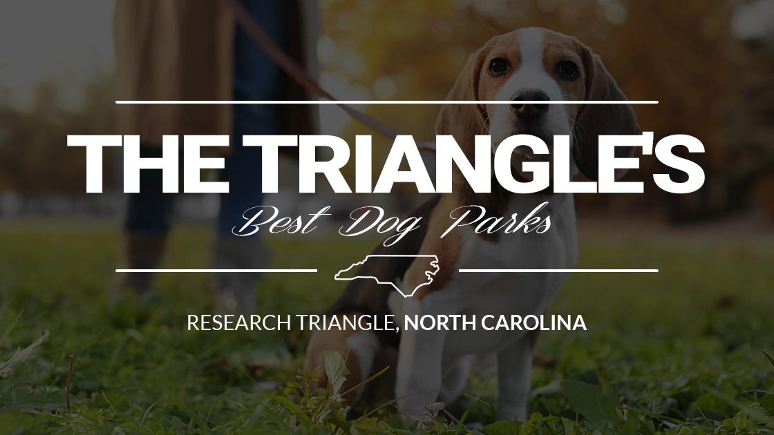 Triangle Area Best Dog Parks North Carolina