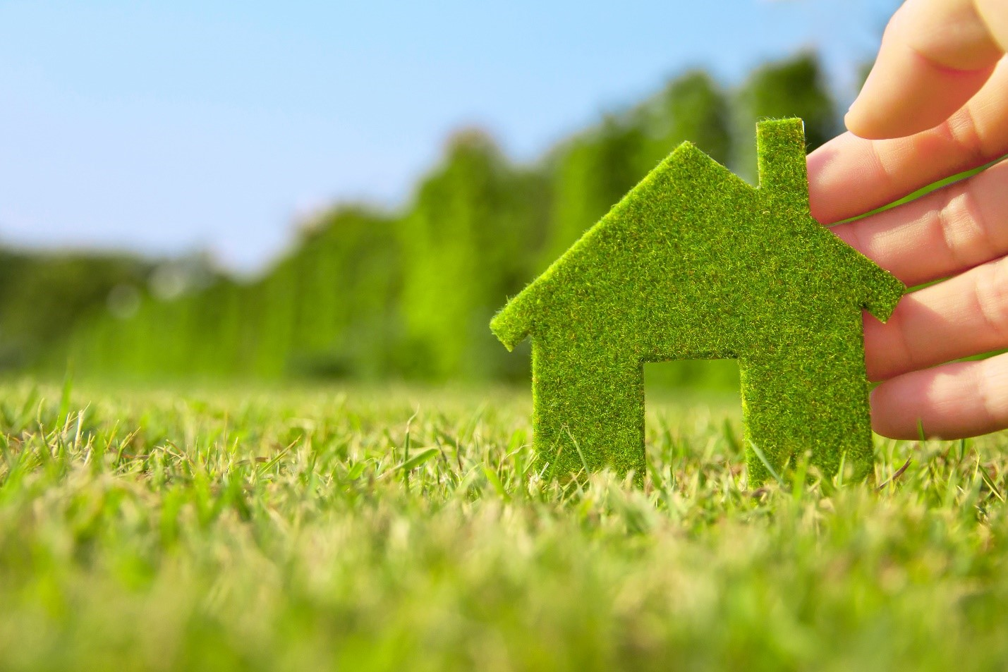 5 Energy Saving Tips For New Home Buyers