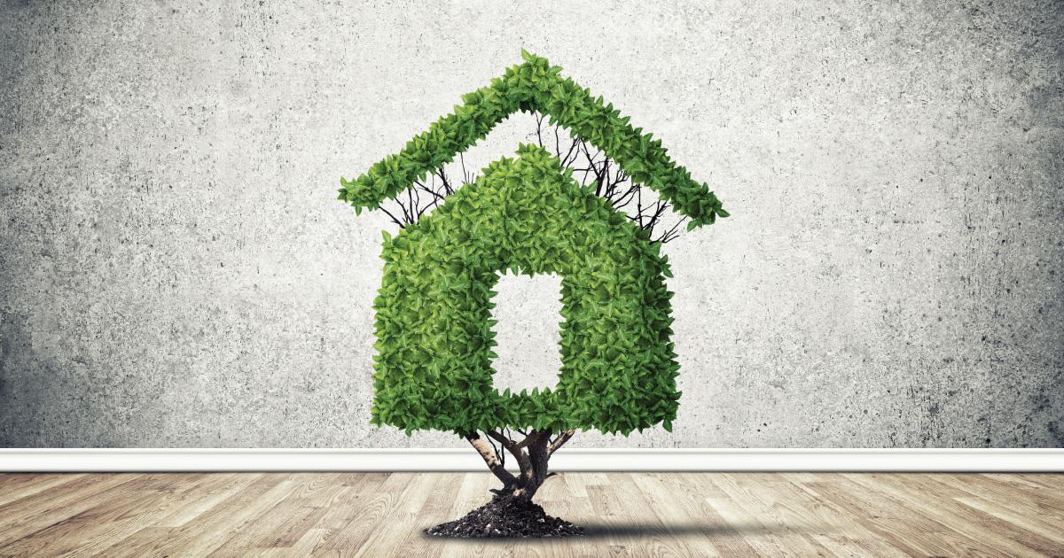 Edmonton Property Values & Weed