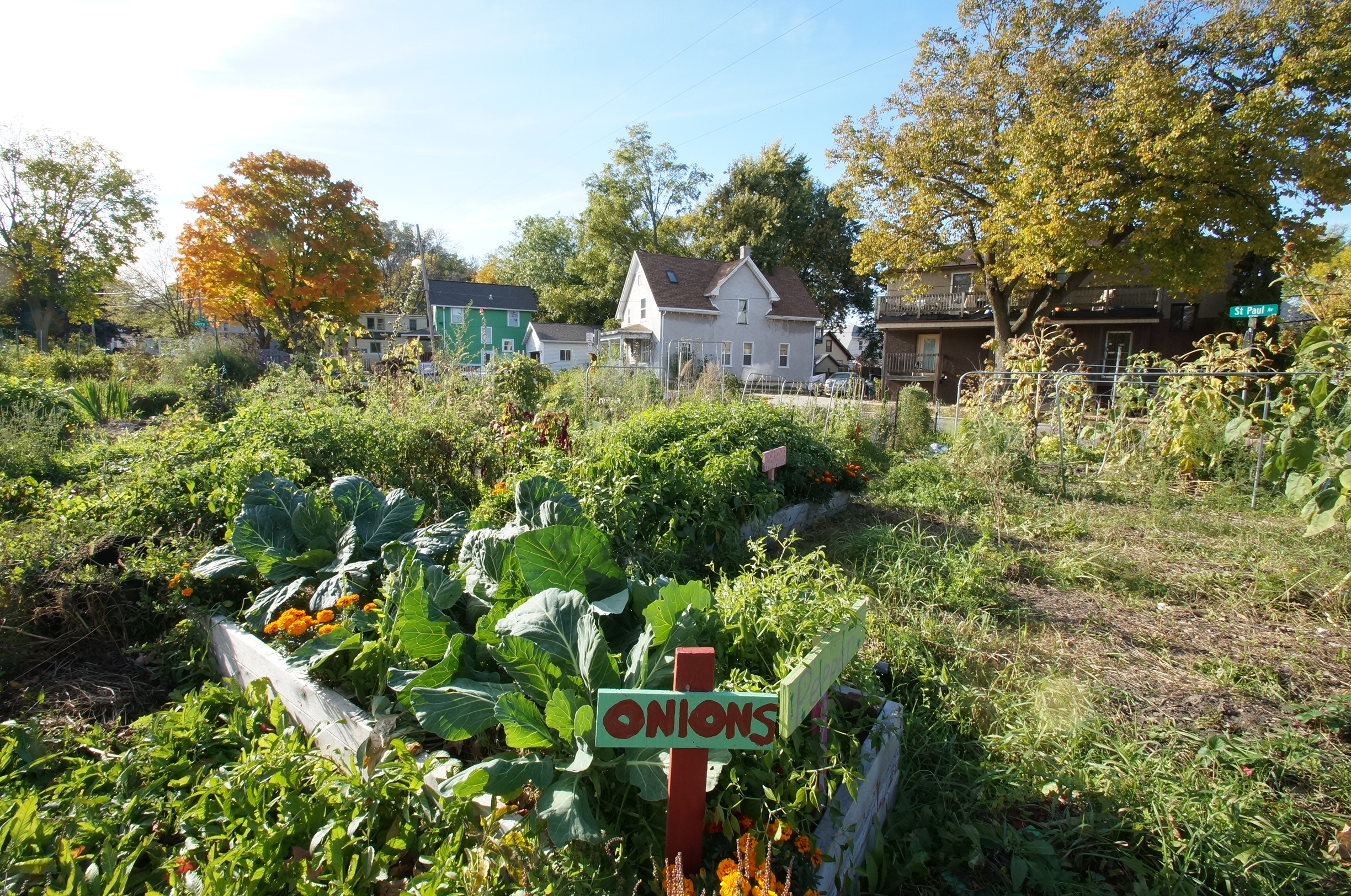 schenk atwood community gardens photo