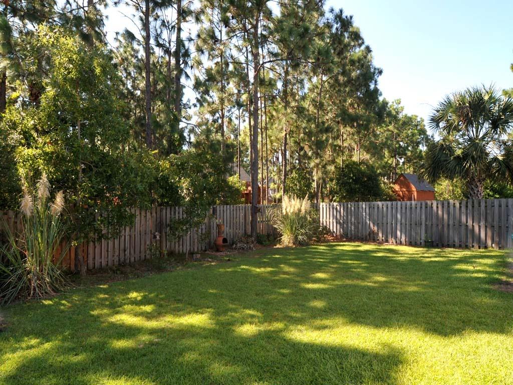 backyard_1024