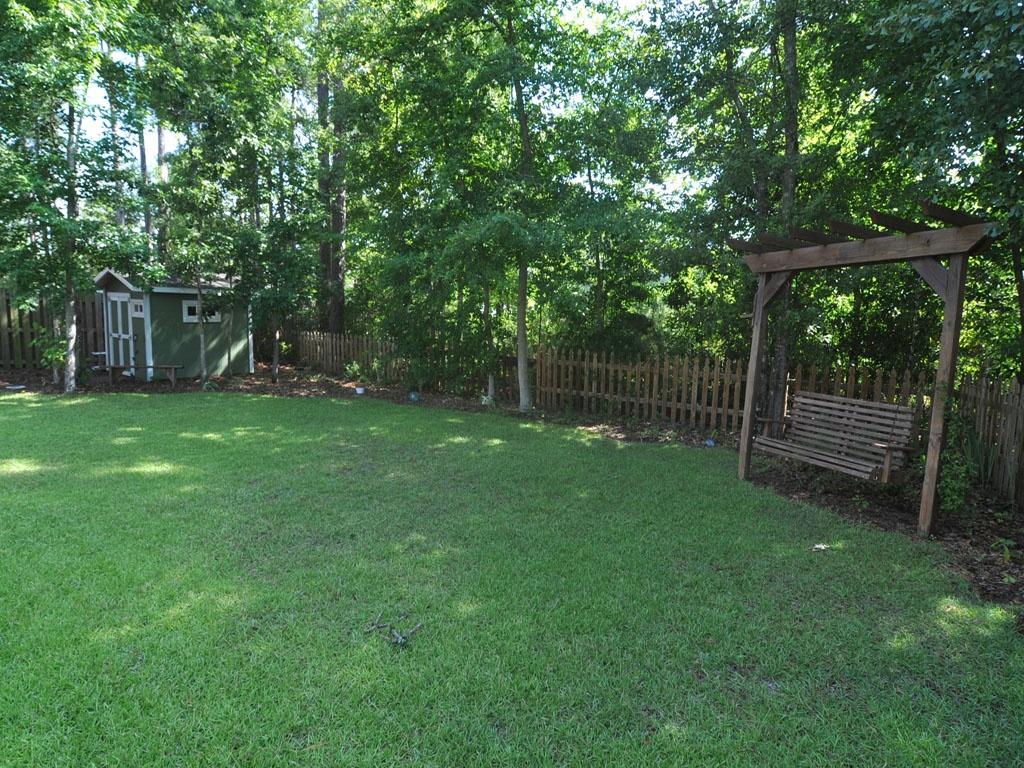 backyard__1024_01