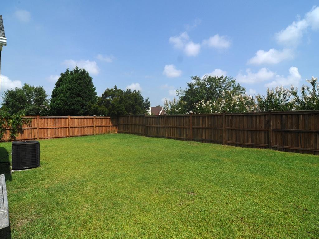 backyard__1024_03