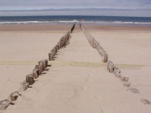 beach path at ocean