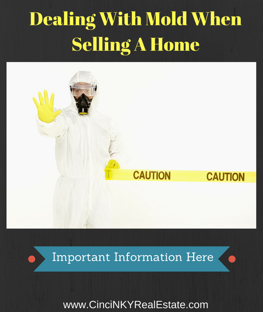 dealing with mold when selling a home