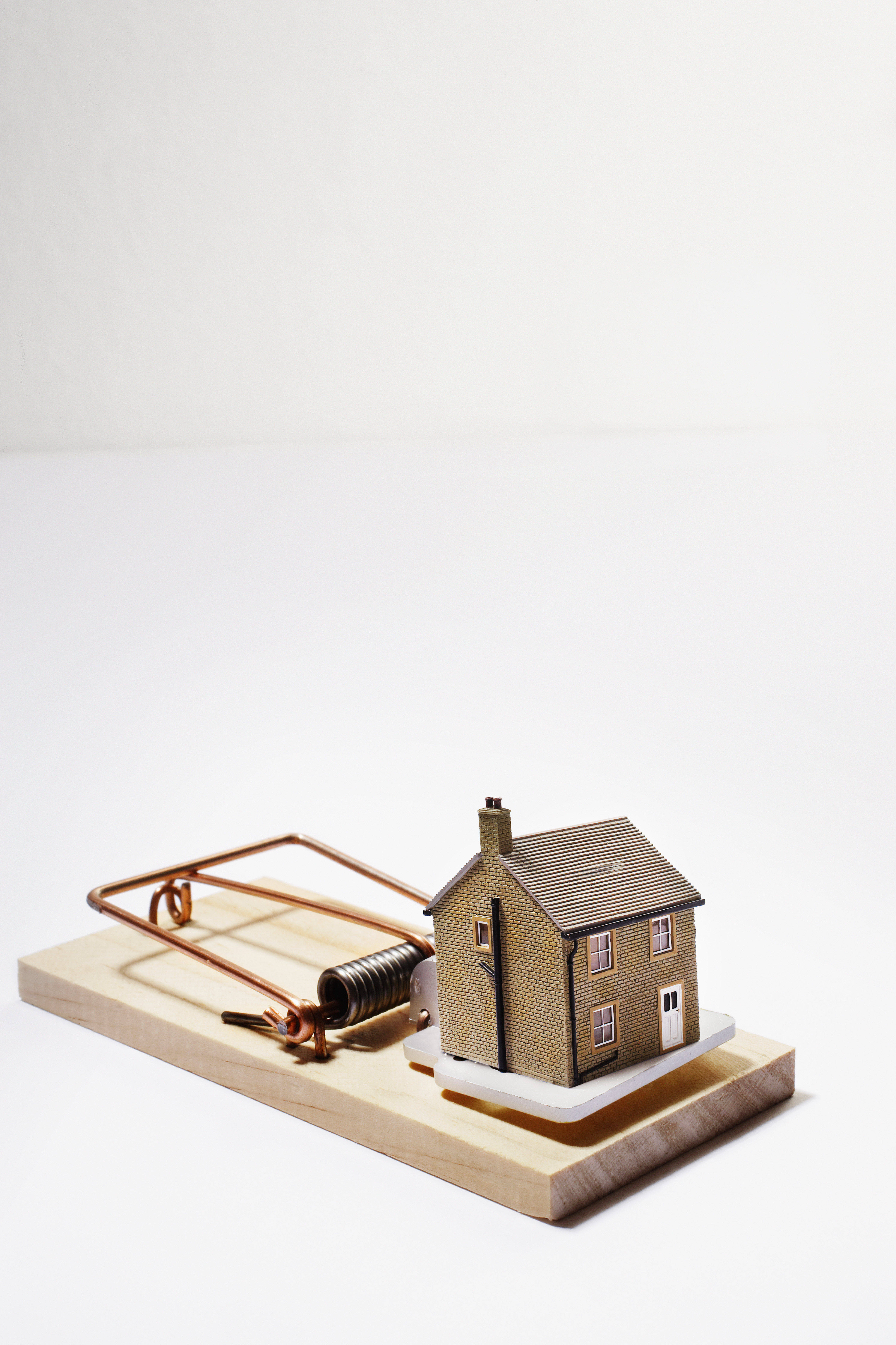 house on mouse trap