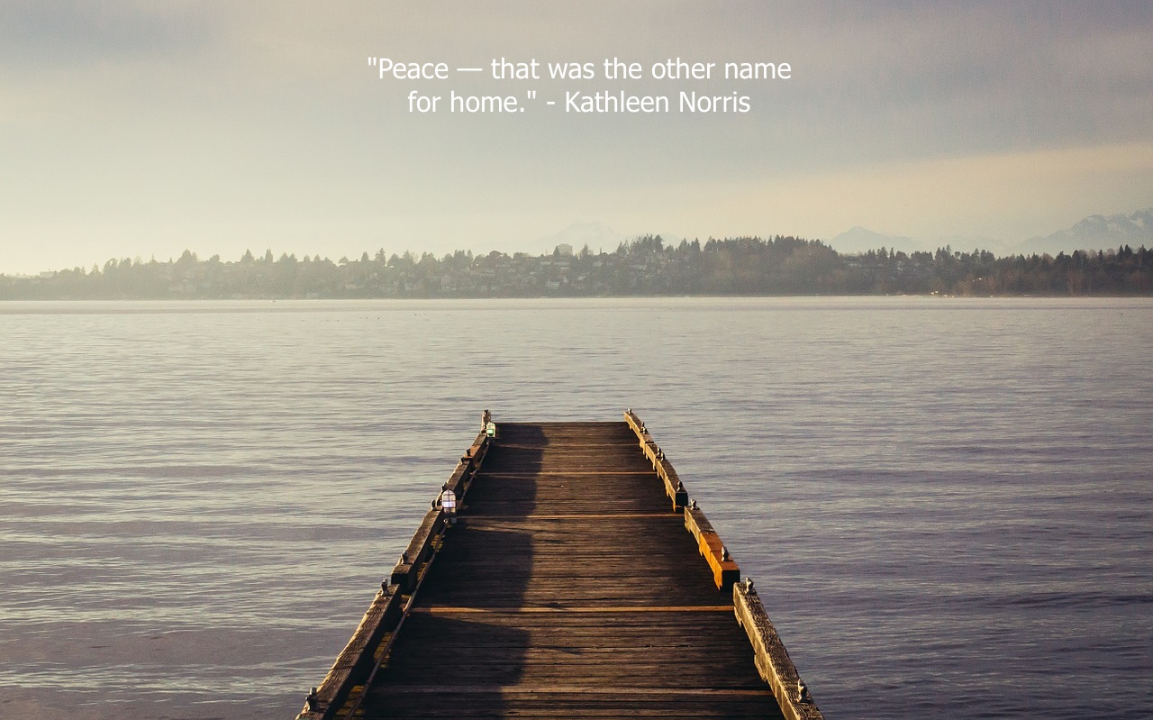 Picture of homes on a field and quote from Kofi Annan Knowledge is power. Information is liberating.